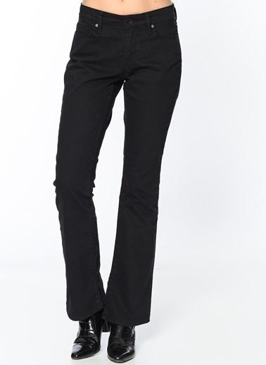Mavi Jean Pantolon | Molly - Regular Siyah